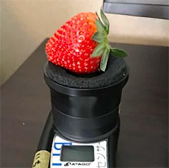 ATAGO PAL-HIKARI 4 草莓甜度計